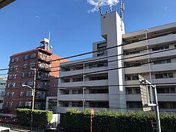 マンション 中古 文京 区