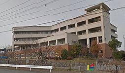 福岡県筑後市大字山ノ井の賃貸マンションの外観