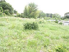 緑溢れる地で素敵な新生活をお楽しみください