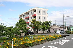 TAKEYARIハイツII[401号室]の外観