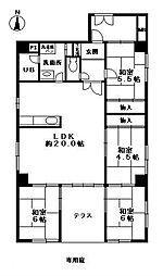 シャンピア藤崎[1階]の間取り