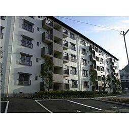 長崎県長崎市葉山1丁目の賃貸マンションの外観