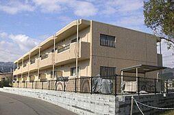 Beauterraceステラ[1階]の外観