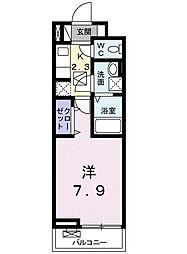 ラフィーネIII[305号室]の間取り
