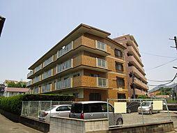 石坂ビル[305号室]の外観