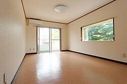 パインツリー次郎丸[2階]の外観