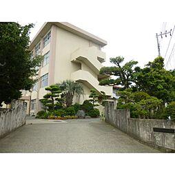 [一戸建] 神奈川県小田原市新屋 の賃貸【/】の外観