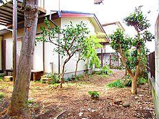 庭の様子(東側)