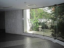 グリーンハイツ新道[6階]の外観