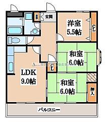 メゾンアコアラム[5階]の間取り