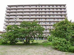 Mプラザ城東六番館[10階]の外観