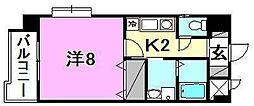 メゾンドール錦町[305 号室号室]の間取り