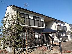 ダイヤモンド ディアス mizuya A[1階]の外観