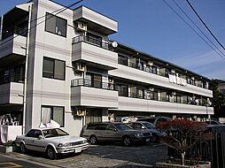 レジデンスカシマ[305号室]の外観