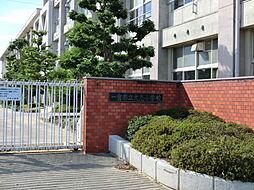 大志小学校 徒歩 約3分(約220m)