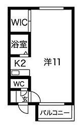 北海道札幌市豊平区美園十一条5丁目の賃貸マンションの間取り