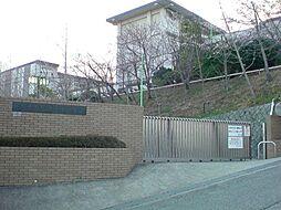 [一戸建] 兵庫県西宮市柏堂町 の賃貸【/】の外観