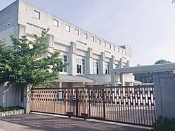 [テラスハウス] 大阪府堺市北区百舌鳥西之町2丁 の賃貸【/】の外観