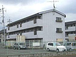 きらめき壱番館・弐番館[1-305号室]の外観