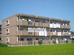 ア・ドリーム松田[1階]の外観