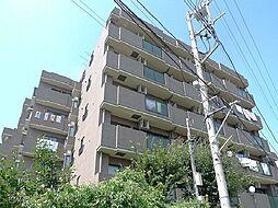 千葉県柏市富里3丁目の賃貸マンションの外観