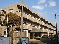 埼玉県所沢市上新井5丁目の賃貸マンションの外観
