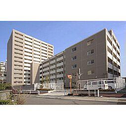 東京都板橋区氷川町の賃貸マンションの外観