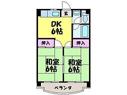 愛媛県松山市枝松3丁目の賃貸マンションの間取り