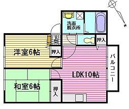 サンライフ坂本D棟[2階]の間取り