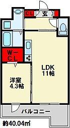 フェリシエ三萩野 5階1LDKの間取り