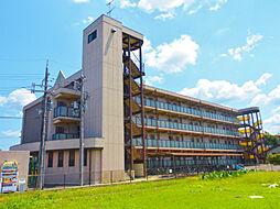 滋賀県草津市追分2丁目の賃貸マンションの外観