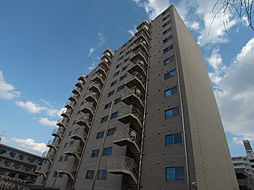 HOUSE・北柏2号棟〜ハウスキタカシワ2ゴウトウ〜[301号室]の外観