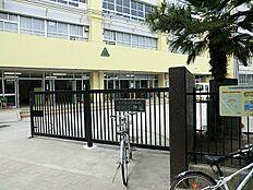 枝川小学校(約400m5分)