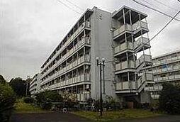 神奈川県横浜市瀬谷区阿久和西4丁目の賃貸マンションの外観