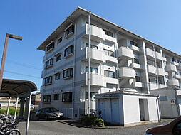 茨城県つくば市松代5丁目の賃貸マンションの外観