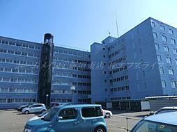 北海道札幌市東区北四十一条東1丁目の賃貸マンションの外観