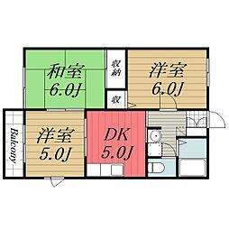 千葉県印旛郡栄町安食3丁目の賃貸アパートの間取り