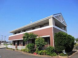大阪府貝塚市三ツ松の賃貸アパートの外観