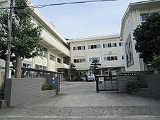 中学校亀川中学校まで1140m