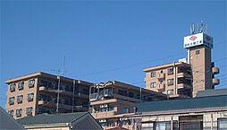 ペアシティ久喜参番館[311号室]の外観