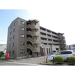 新潟県新潟市中央区鳥屋野3丁目の賃貸マンションの外観