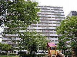 ニューシティ東戸塚パークヒルズM棟[1307号室]の外観