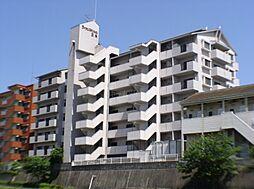 ライオンズマンション五条[5階]の外観