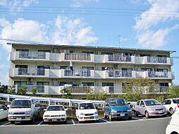 石山コーポ[4階]の外観