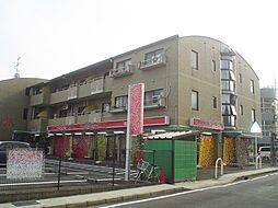 長岡中央第一ビル[207号室]の外観