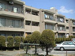 平和が丘住宅7棟[304号室]の外観