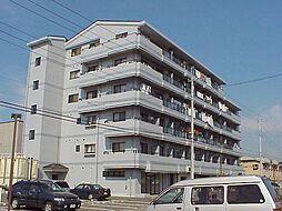 栃木県宇都宮市元今泉3丁目の賃貸マンションの外観