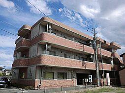 新潟県新潟市西区五十嵐東3丁目の賃貸マンションの外観