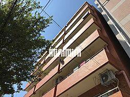 浅井ハイツ[7階]の外観