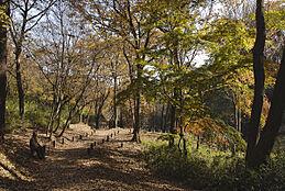 平山緑地 1590m